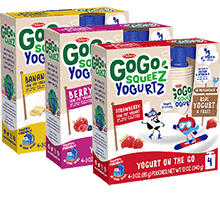 Image of YogurtZ 12 Pouch Variety Packaging